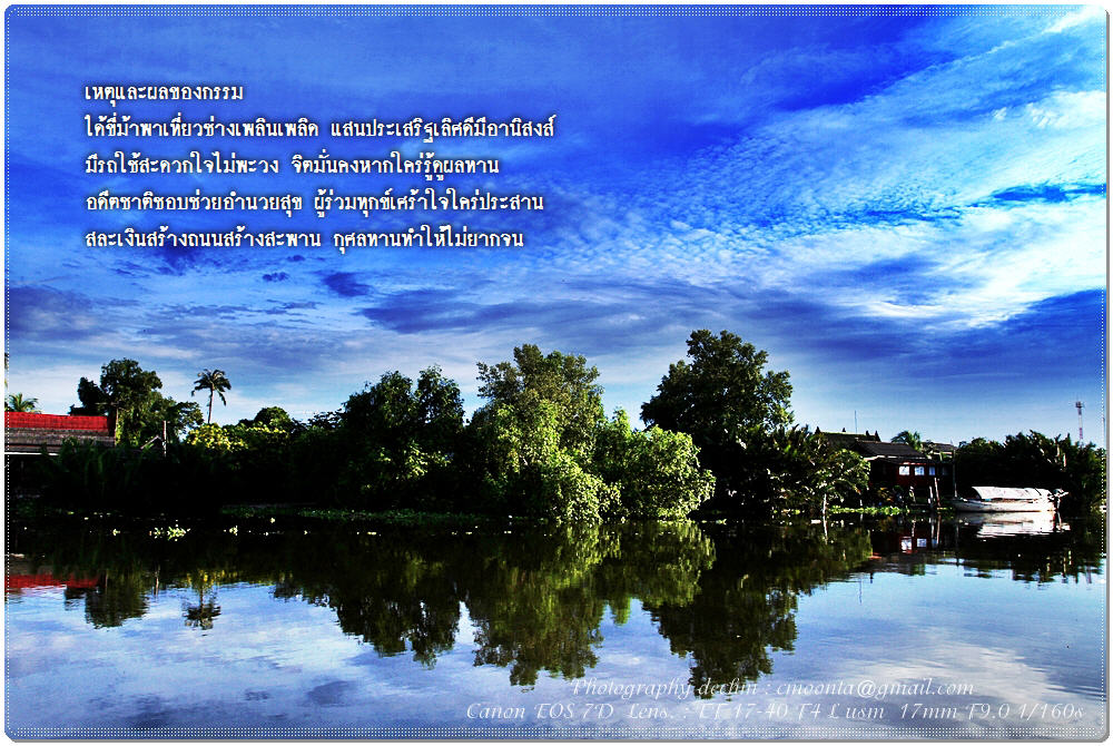 picture2011%5C269255413193.JPG