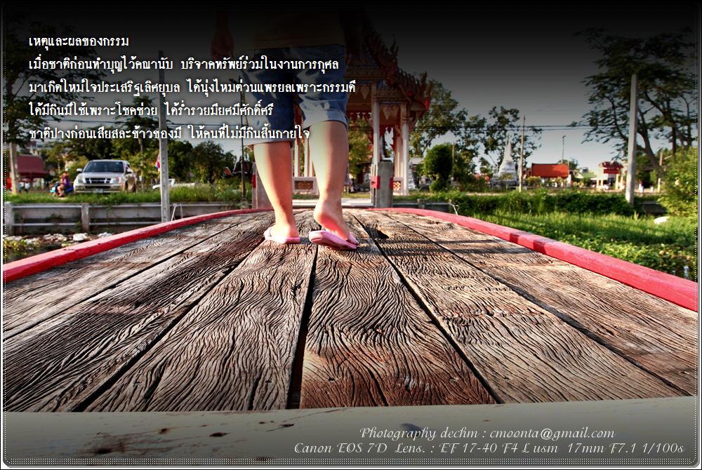 picture2011%5C269255413255.JPG