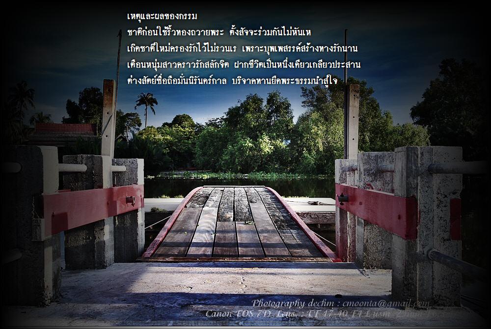 picture2011%5C269255413294.JPG