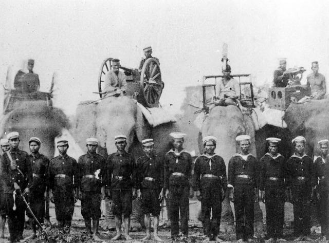 thee machine gun elephant